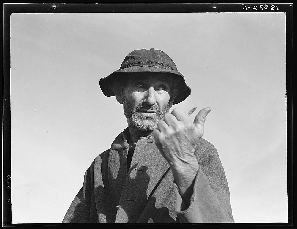 Cotton picker near Firebaugh