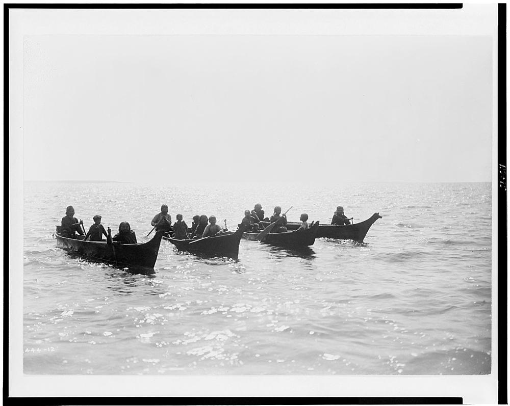 On Shoalwater Bay