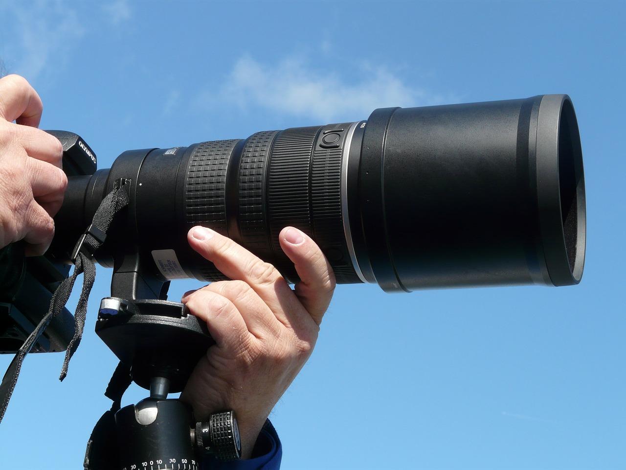 Photographing a Safari