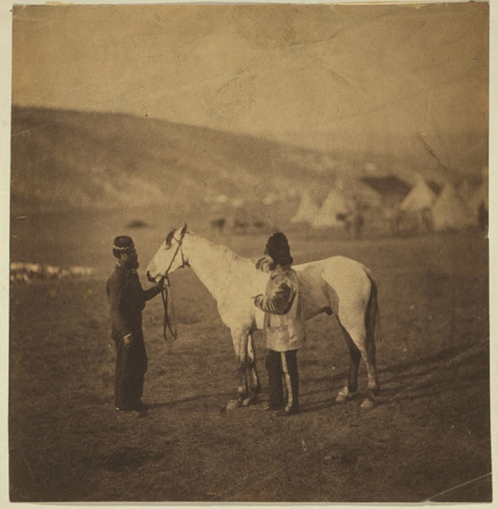 Colonel Clarke, Scots' Greys, with the horse wounded at Balaklava