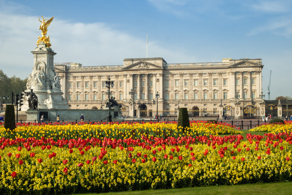 Spring flowers in front of Buckingham Palace,