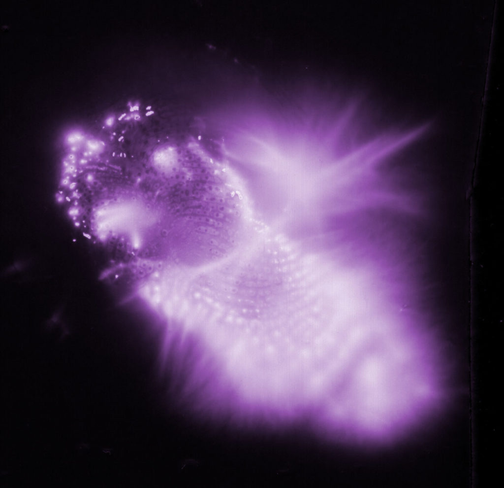 Kirlian fingerprint