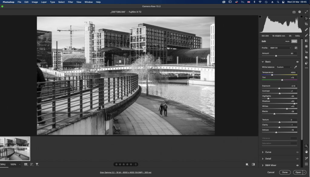 A black and white image in Adobe Raw.