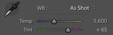 adjusting white balance