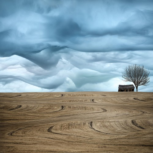 art farmland
