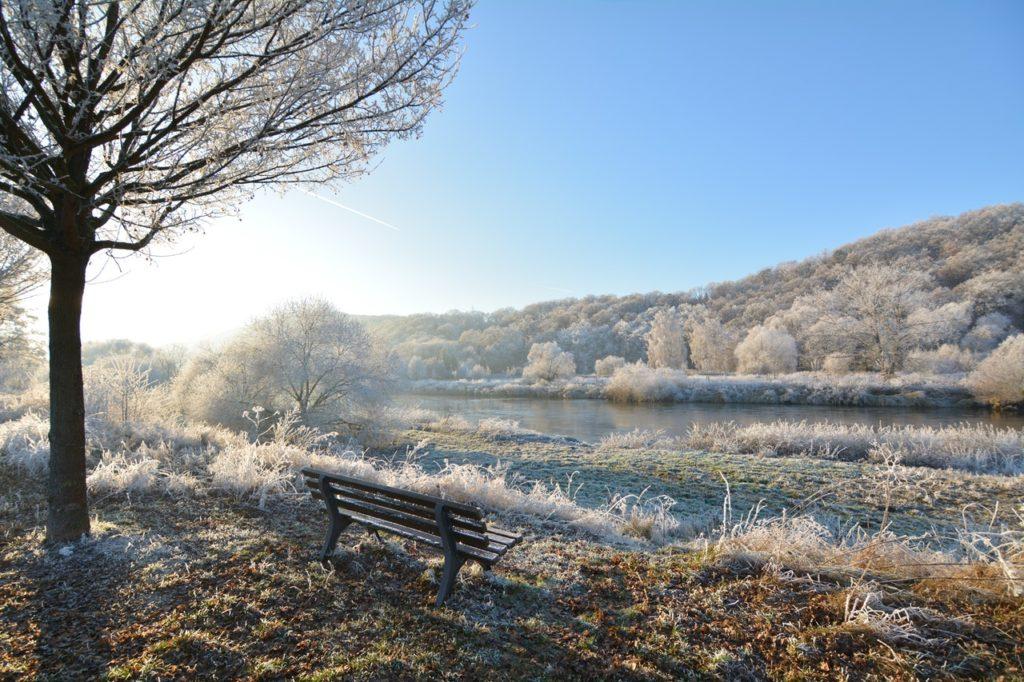 bench daylight fog frost