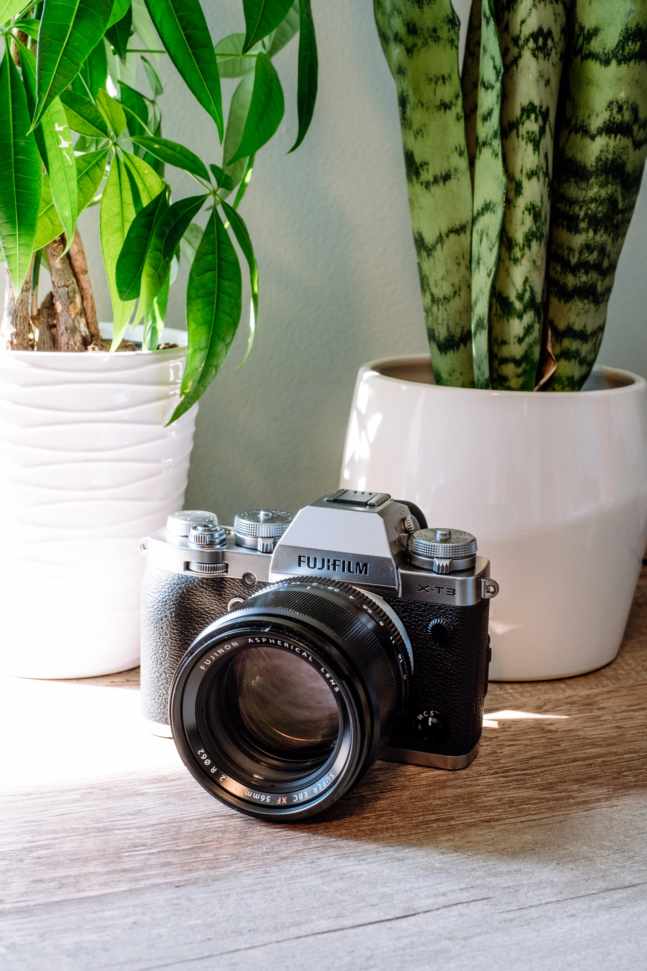 black and grey fujifilm dslr camera beside white potted
