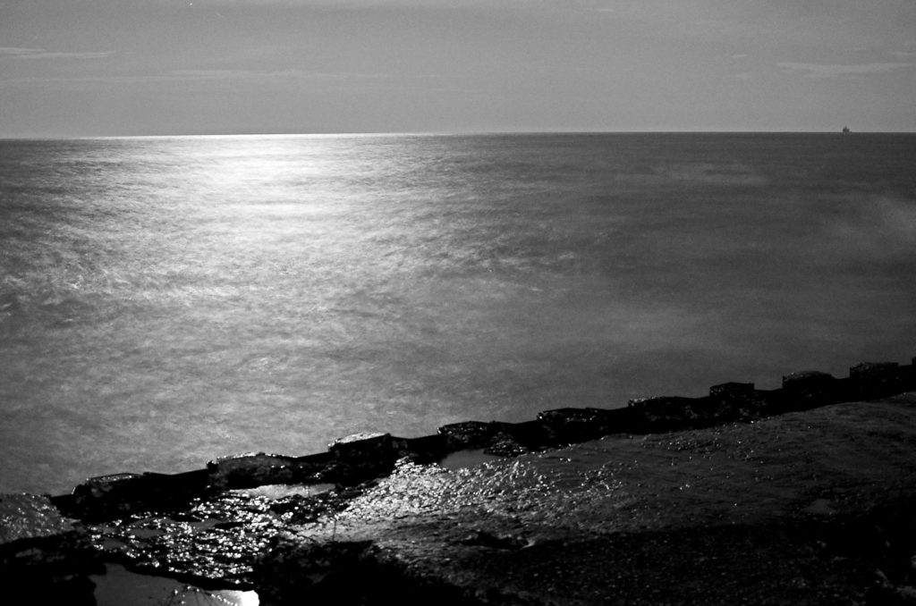black and white night under moonlight