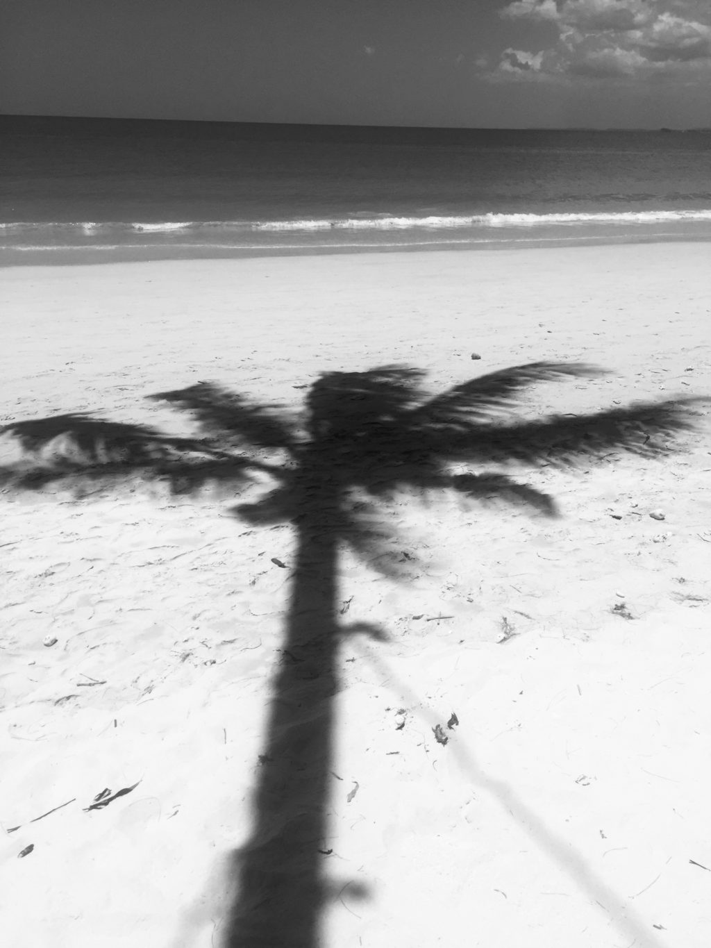 39 Stunning Images Of Beaches In Black And White