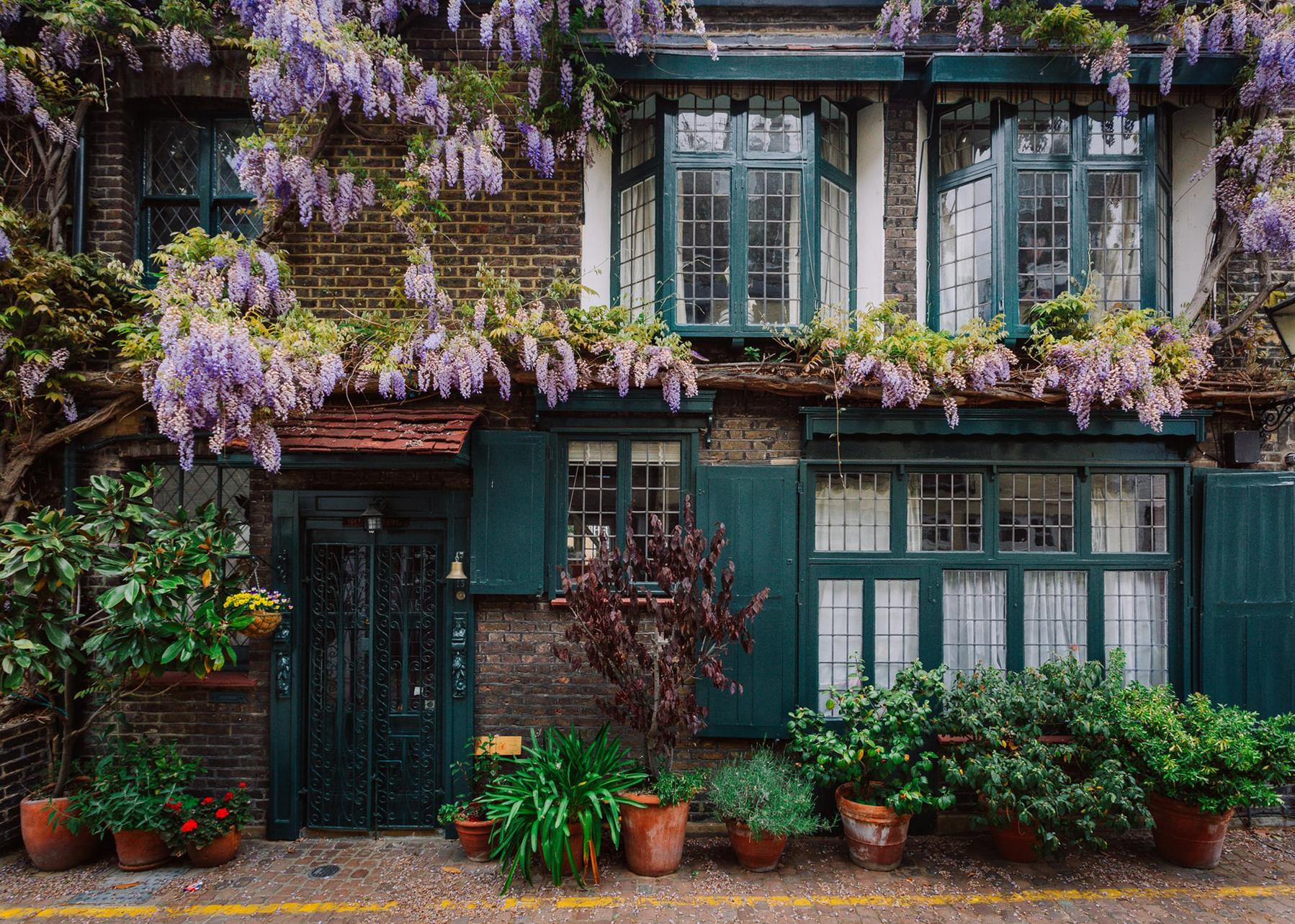 Tips For Stunning Garden Photography