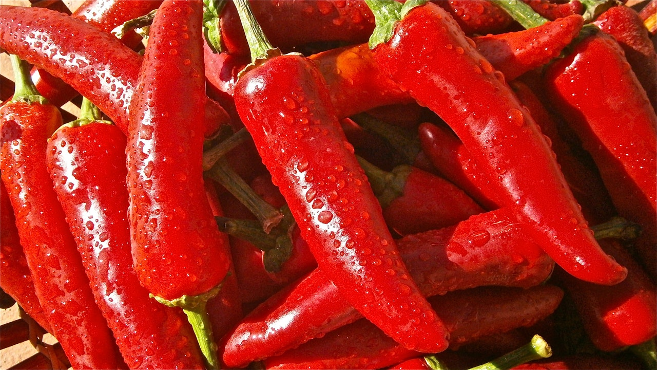 photographs of chillis