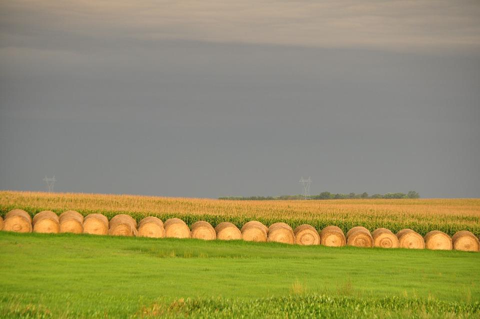 field atmospheric