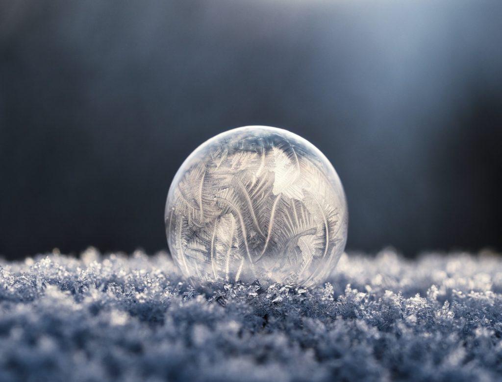 macro frost bokeh