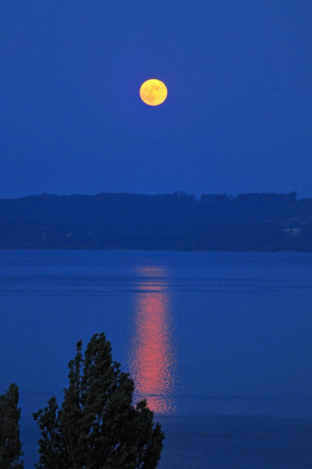 moon rising over the lake