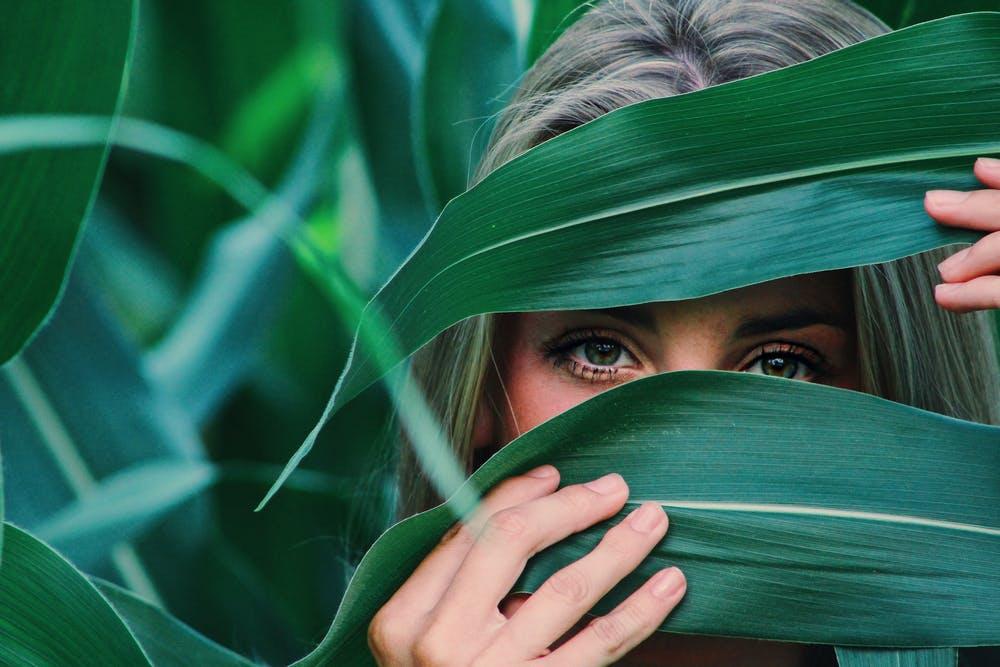 Eyes through leaf