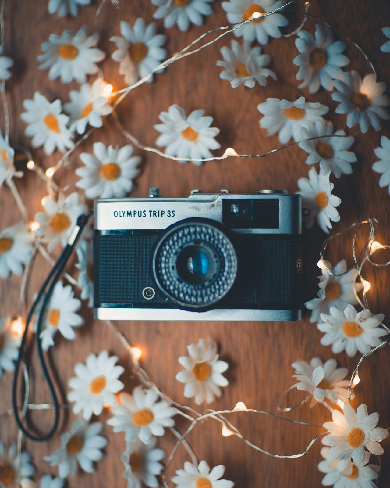 photo of analog camera surrounded by string lights