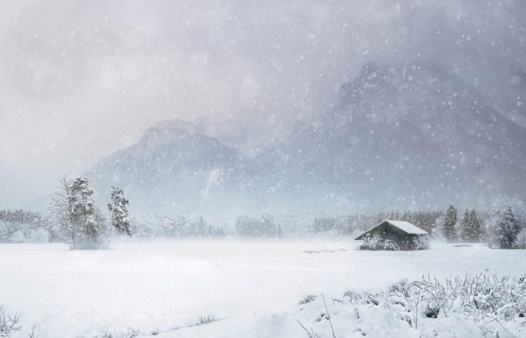 photo of snowy field