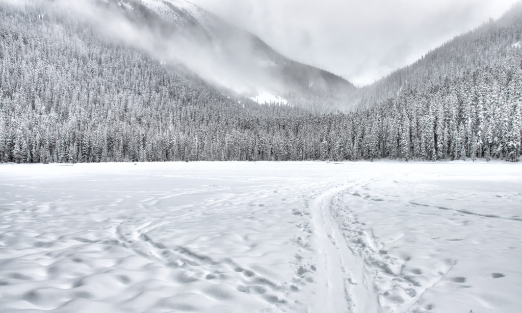 31 Cool Snowscapes for Inspiration | Light Stalking