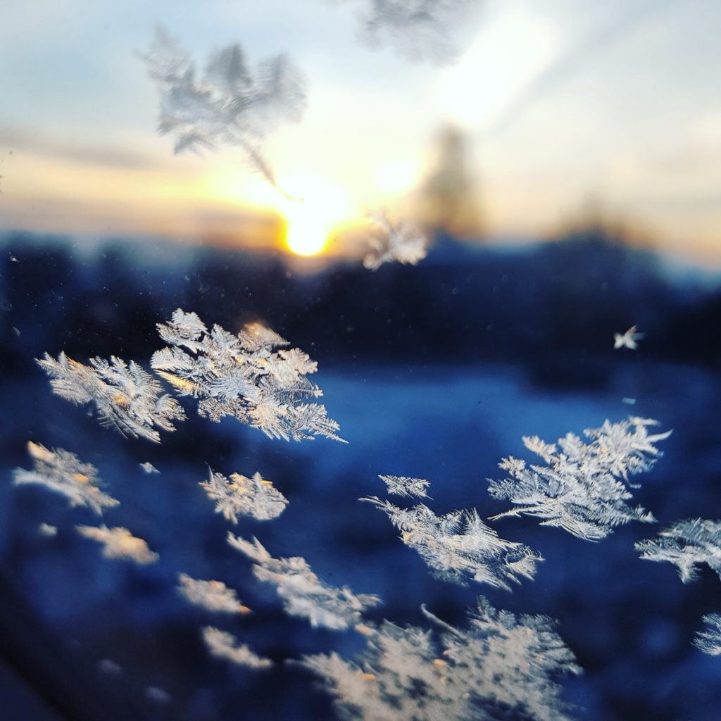 photo of snowflakes on a window