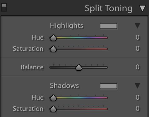 split toning panel